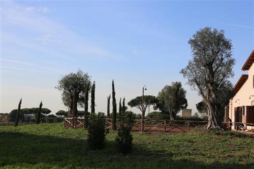 Appia Antica  ROMA (RM)